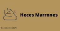 heces marrones