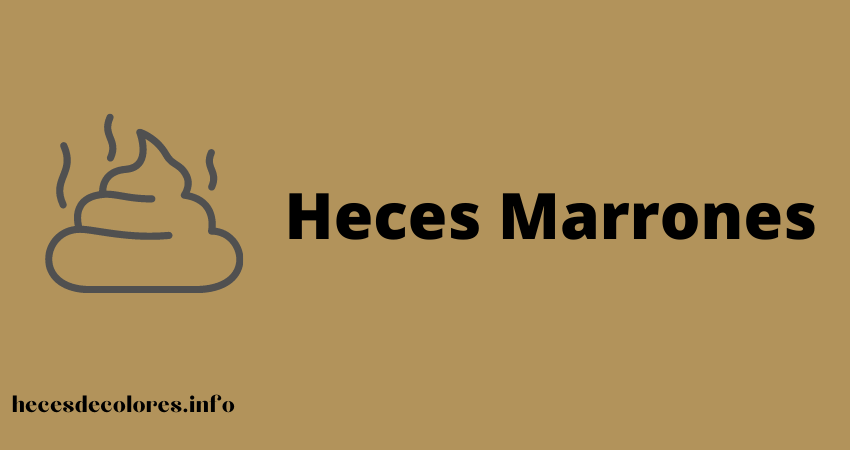 heces marrones